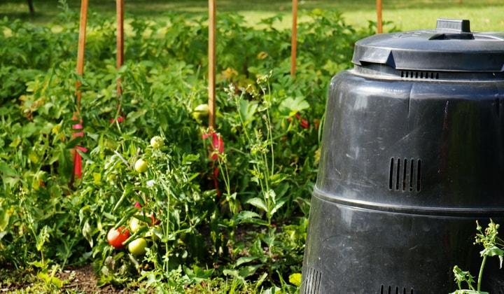 En modern kompost bredvid ett trädgårdsland.